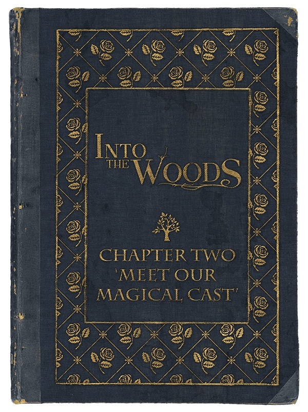 chapter-two-into-the-woods-sound-ideas-theatre-norfolk